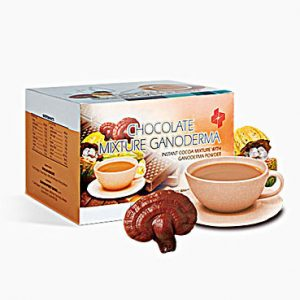 INSTANT CHOCOLATE MIXTURE WITH GANODERMA POWDER